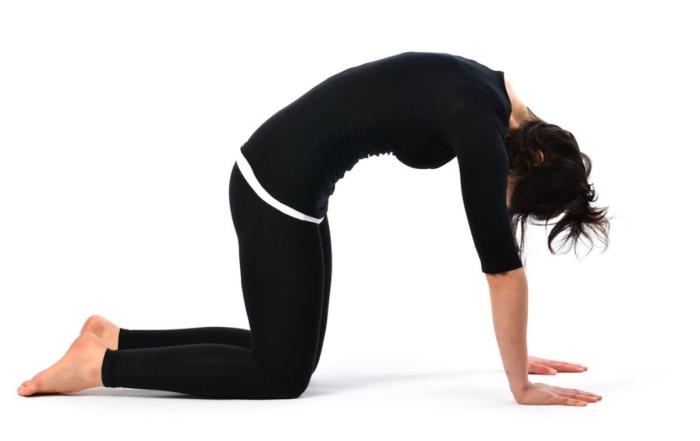 postures de yoga de base pour tous les niveaux videos blue. Black Bedroom Furniture Sets. Home Design Ideas