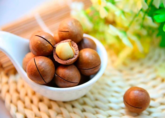 Nuez macadamia colesterol