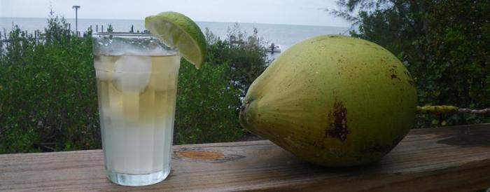 Preparado de agua de coco